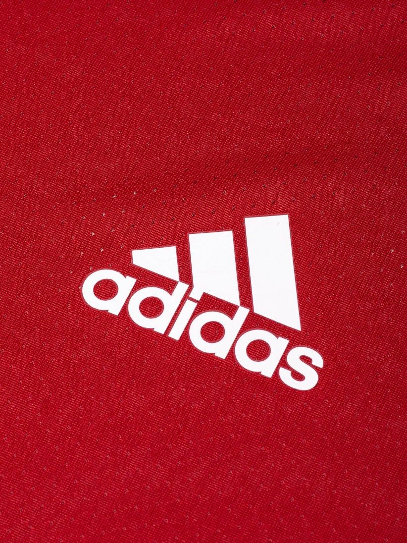T-shirt Adidas S. L. Benfica Y 20/21