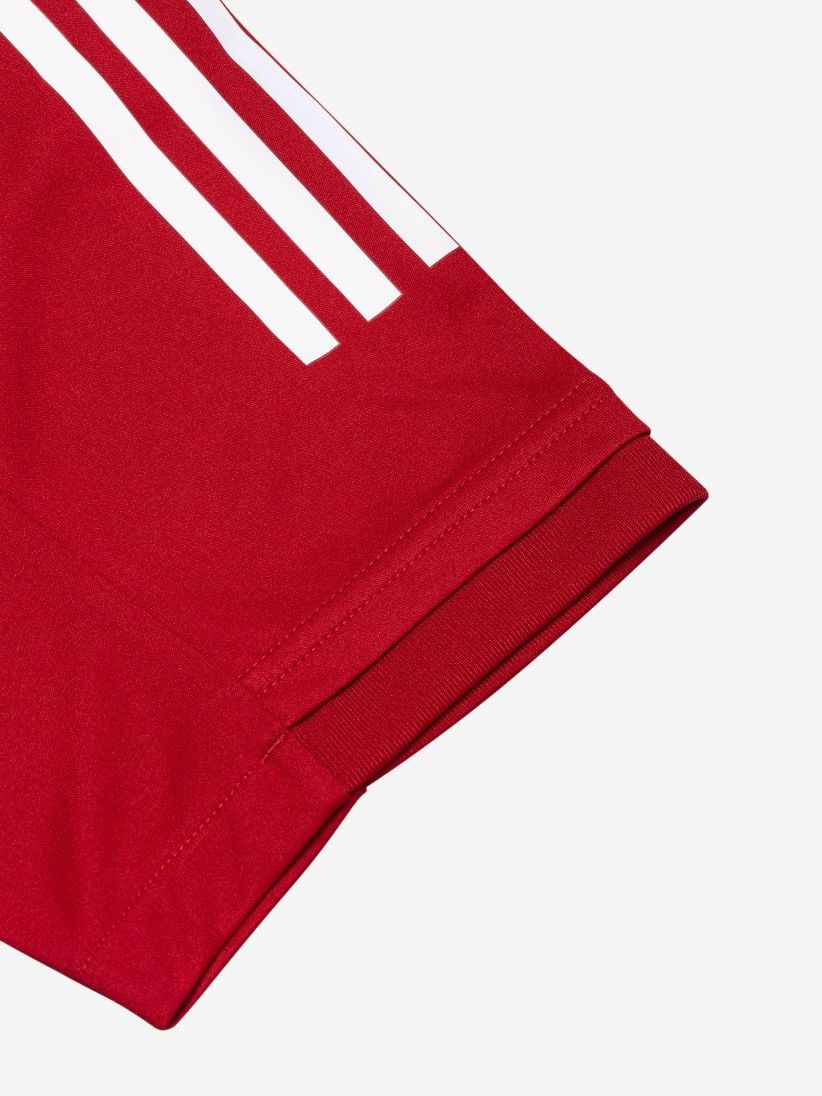T-shirt Adidas S. L. Benfica Striped 20/21